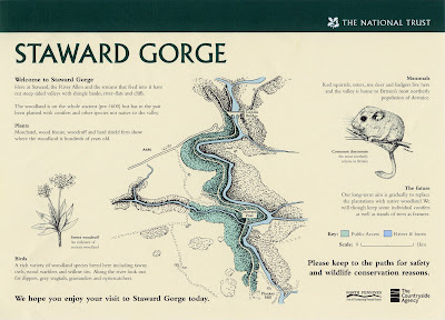 North East artist Ingrid Sylvestre Fine Line illustrations for Interpretive Panels for Staward Gorge National Trust