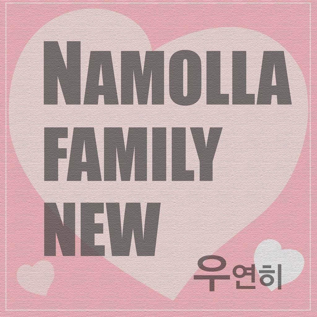 [Single] Namolla Family New – 우연히