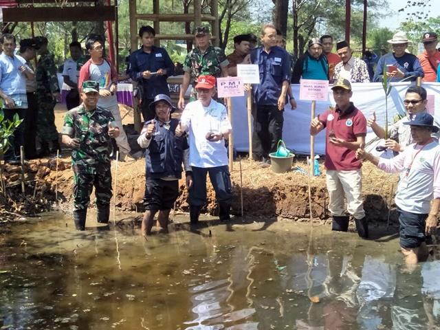 Taman Pusat Edukasi Mangrove Sigandu