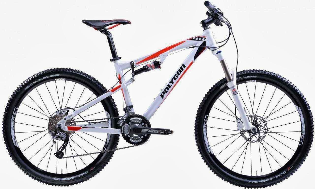 Polygon COZMIC RXX Jenis Sepeda Gunung