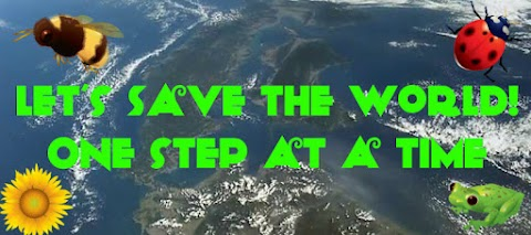 Everybody Wants to Save The World- Here's How We Start