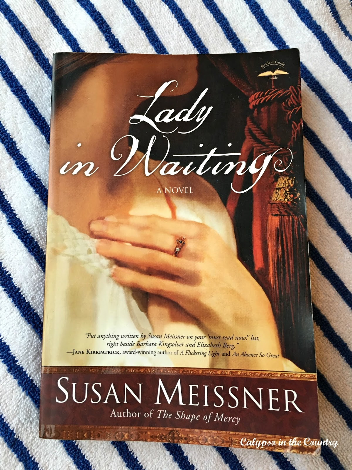 Lady in Waiting - another amazing novel by Susan Meissner