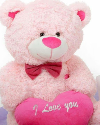 light-pink-teddy-cute-images