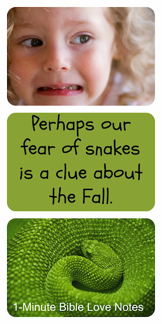 fear of snakes, fall of man, the serpent