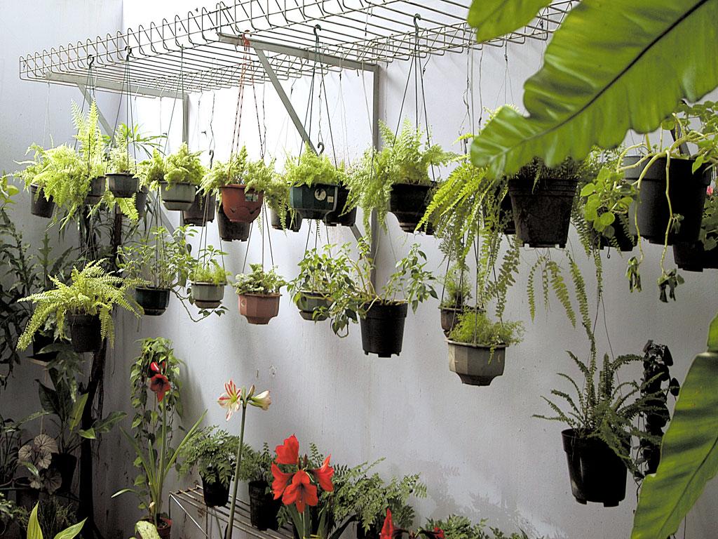 50 Kreasi Unik Pot Tanaman Hias Di Taman - Rumahku Unik