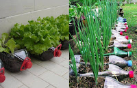 Botellas de plástico recicladas para jardines y huertas