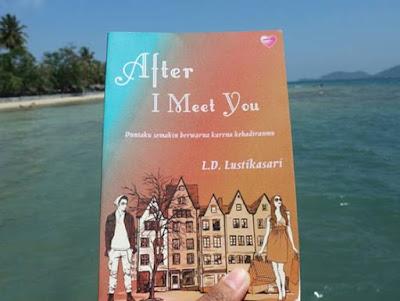 Novel after i meet you