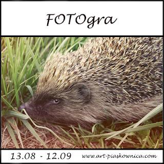 http://art-piaskownica.blogspot.com/2016/08/fotogra-w-trawie-sierpien.html