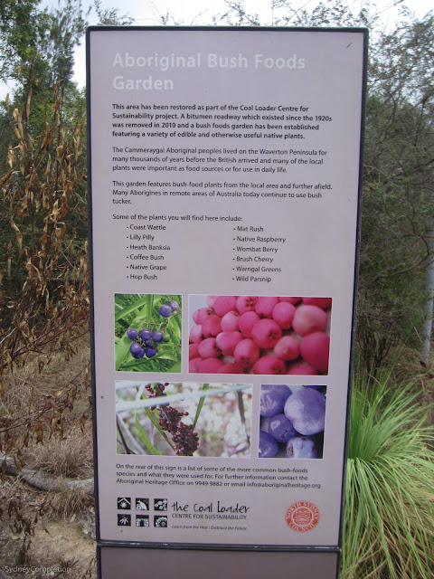 Aboriginal Bush Foods Garden sign at entry to Coal Loader site