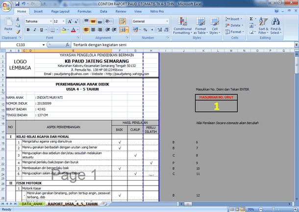 Contoh Raport PAUD TK KB TPA Otomatis Format Microsoft Excel Lengkap