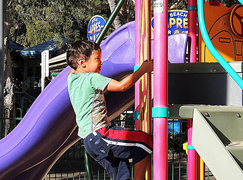NAMC montessori environment supports children with Sensory Issues boy climbing playground