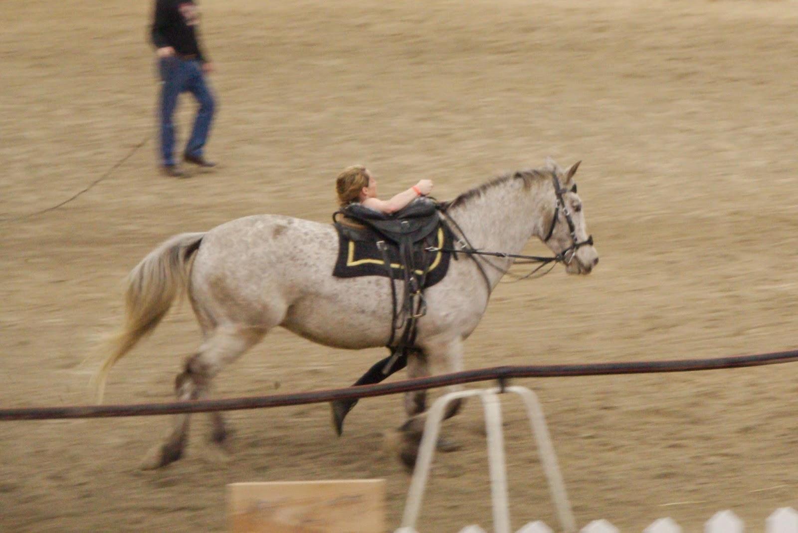 Salon du cheval d 39 albi la comp tition de voltige cosaque for Salon du cheval albi