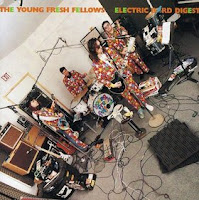 YOUNG FRESH FELLOWS - Electric bird digest