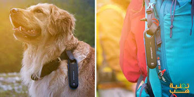 جهاز تحديد المواقع للأفراد والحيوانات