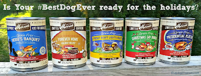 merrick fall and winter seasonal canned dog food