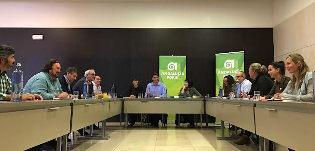 Reunión de la Coordinadora Nacional de Andalucía Por Sí