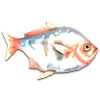 «The Sims 4», рыбалка, изучение рыбалки, рыба, каталог рыб, виды рыб, игра, симулятор, информация об игре, навыки, игровые навыки, информация о рыбалке, полезное о рыбалке, ловля рыбы,