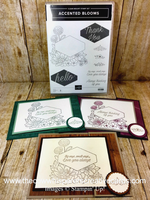 Card, Fancy Fold, Accented Blooms, Stampin UP