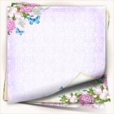 http://scrapkowo.pl/shop,magiczna-kartka-zestaw-rajski-ogrod,1184.html