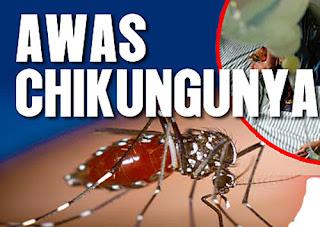 Penyakit Chikungunya