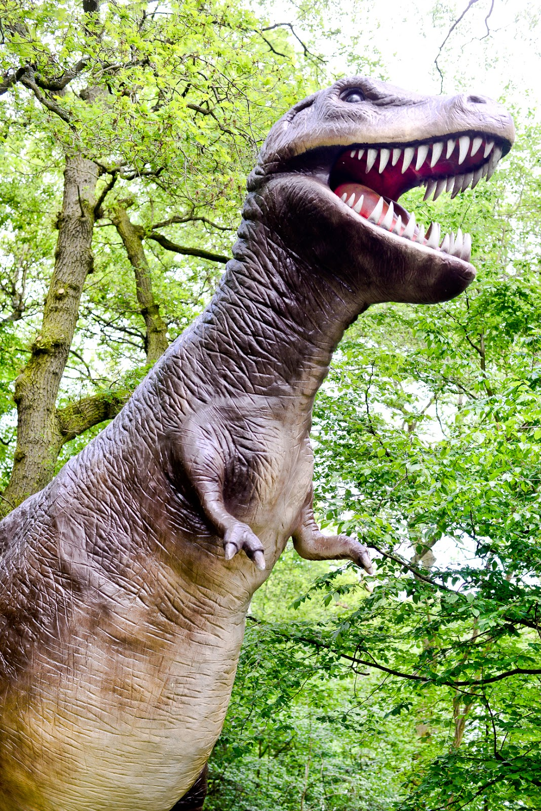 world of dinosaurs paradise wildlife park, paradise wildlife park,