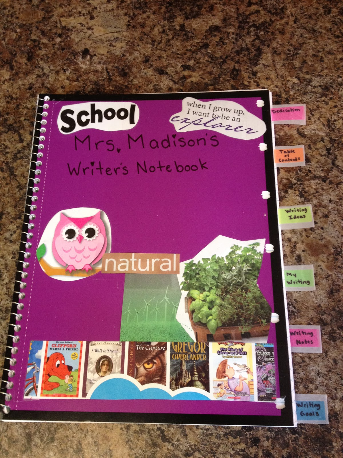 Apples of Your Eye! ~*~: Writer's Notebook Organization!