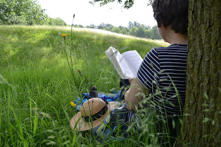 mind grasps quickly when you read in nature