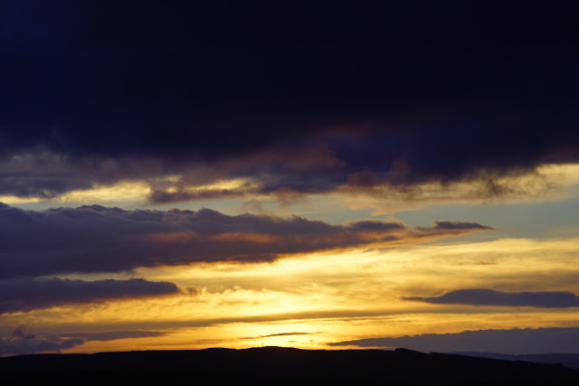 There have been some lovely evening skies on the way home from the nursery