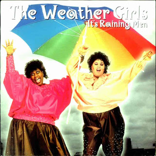 the weather girls - it's raining man, 7'' single cover