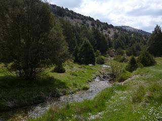 Primeros metros del río Esgueva