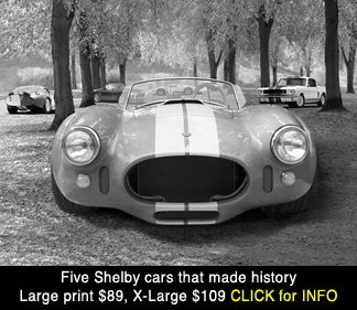 Shelby 427 Cobra, AC, Mustang GT 350, Daytona Coupe, Ford GT Mark 4,IV, large photo print for sale