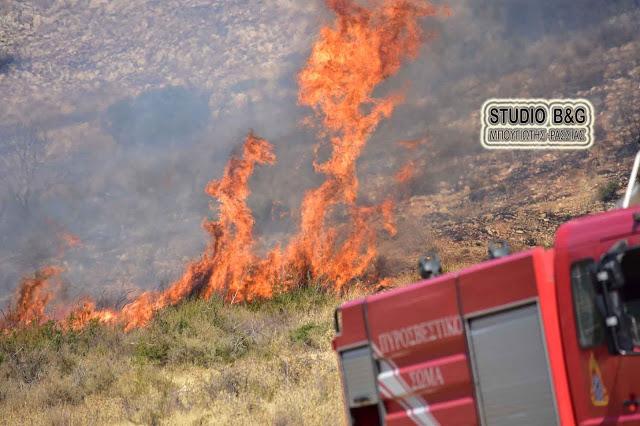 Φωτιά στο Άργος αντιμετωπίσθηκε άμεσα από την πυροσβεστική