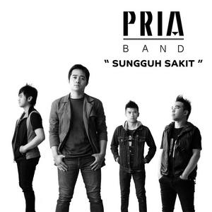 Pria Band – Sungguh Sakit