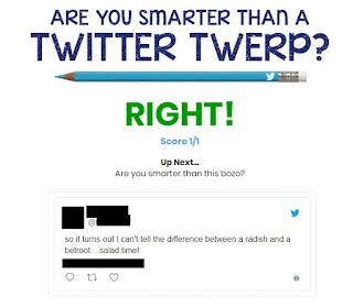 twitter, twerp, game, spiel, klüger, schlauer
