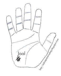 net sign palmistry