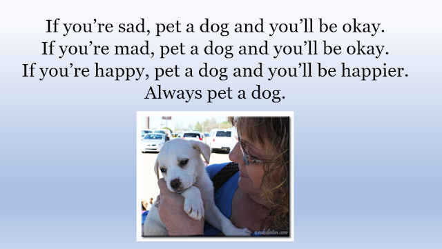 Pet a dog quote with woman and puppy