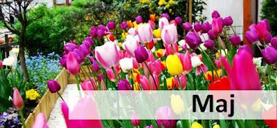 #Podsumowanie kwietnia + zapowiedzi