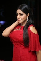 Poorna in Maroon Dress at Rakshasi movie Press meet Cute Pics ~  Exclusive 76.JPG