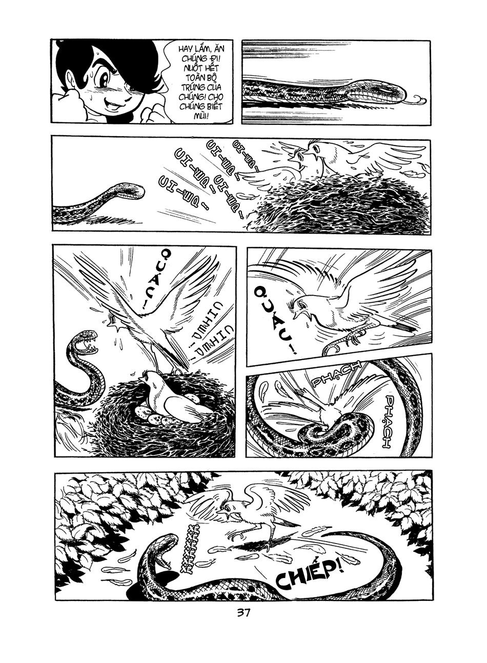 Apollo's Song chap 0 trang 36