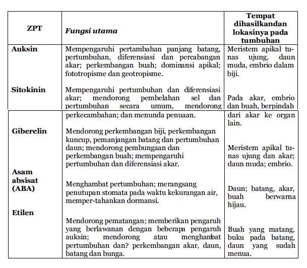 Peranan ZPT pada pertumbuhan dan perkembangan tumbuhan (Fungsi utama ZPT dan lokasi dihasilkannya)