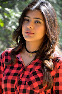 hebah patel at nnnbf success meet