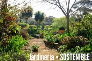 jardiner a sostenible combinaciones de plantas