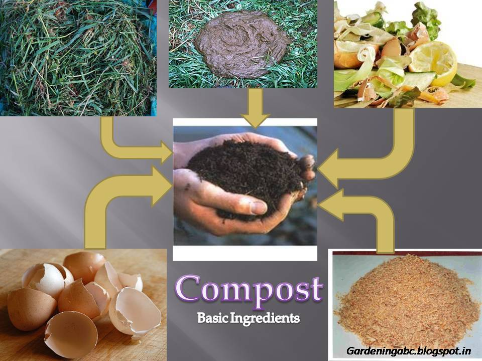 Compost Ingredients how to make a compost