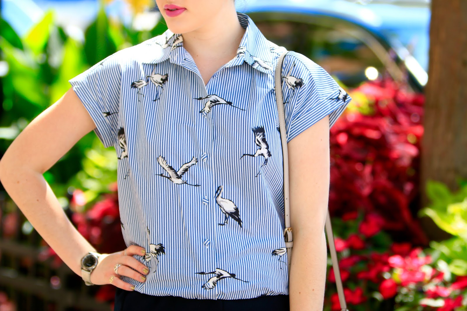 bird button down top
