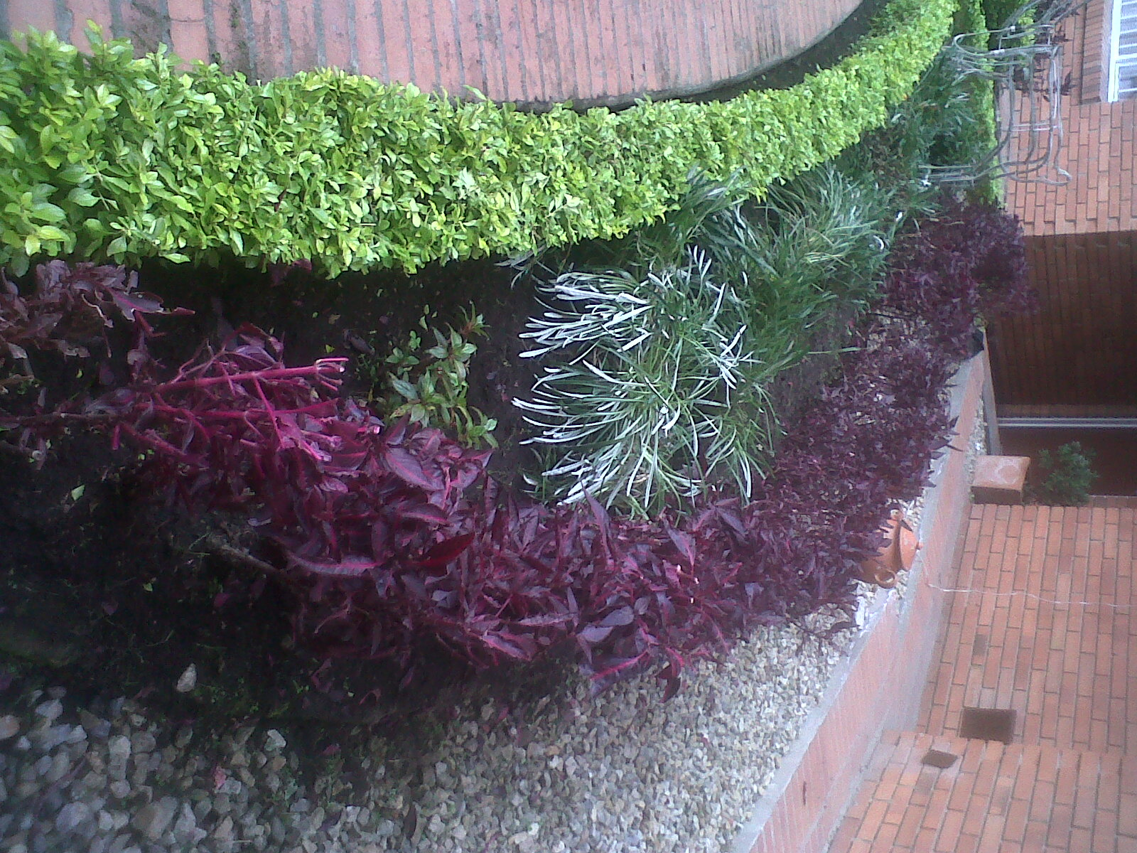 Jardineria dilains - Disenos de jardineria ...