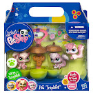 Littlest Pet Shop Petriplets Squirrel (#1882) Pet