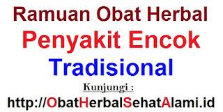 Ramuan obat herbal penyakit encok tradisional