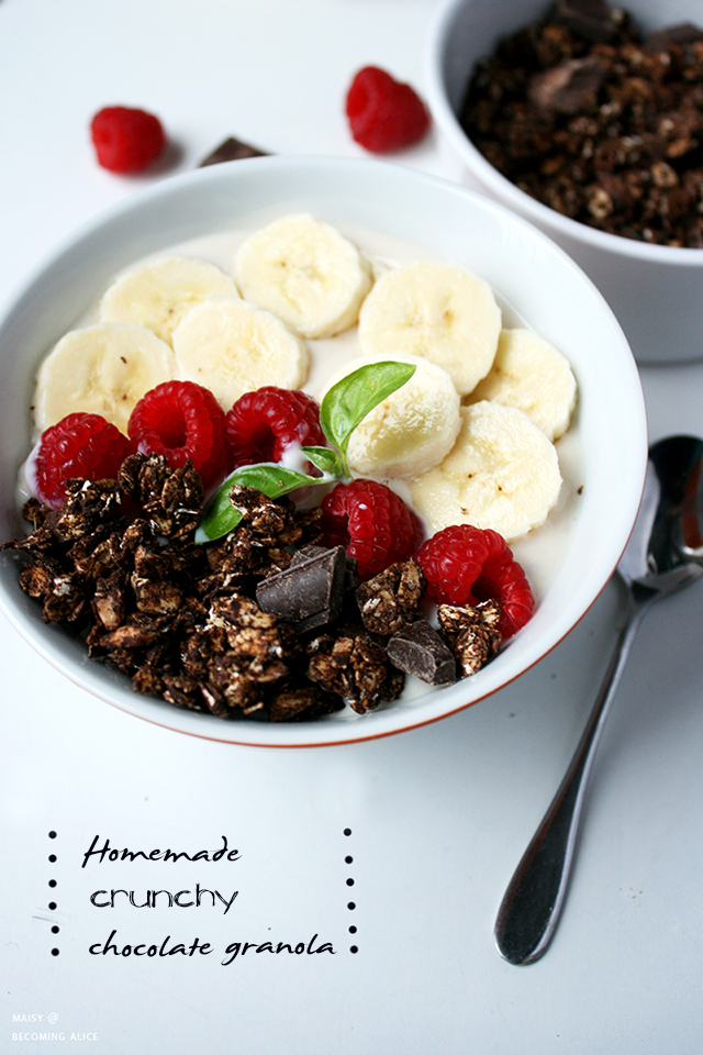 homemade granola, recipe, dairy-free, breakfast, snack, chocolate, vegan