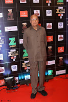 Bollywood Celebrities on the Red Carpet Of Zee Cine Awards 2017 Exclusive 118.JPG