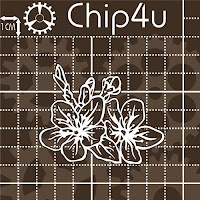 http://chip4u.in.ua/flora_i_fauna/flora/tsvety-s-butonami